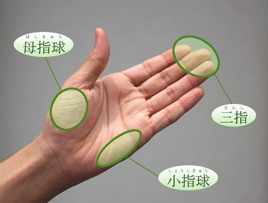 押圧操作に用いる手掌の部分 ... : 体の部位の名前 : すべての講義